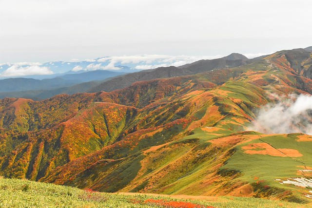 朝日連峰の紅葉