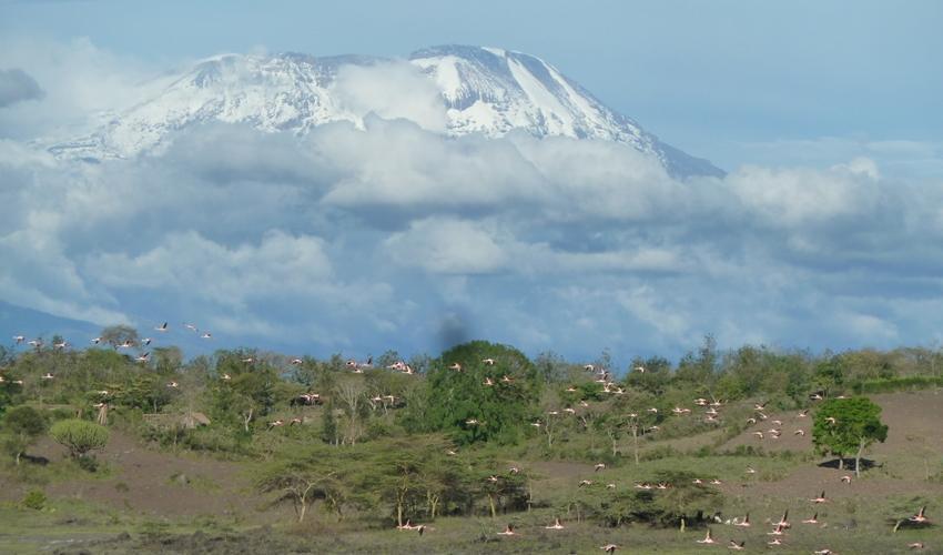 kilimanjaro_national_park_tanzania._c_iucn_elena_osipova_850