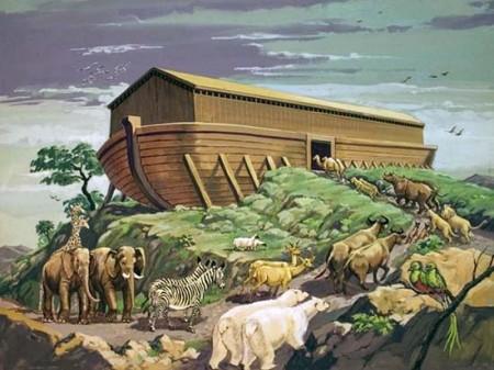Tàu Nô-ê Có Hay Không?