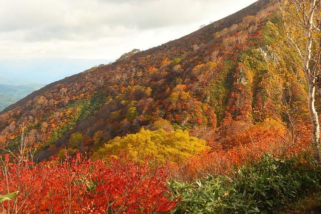 小朝日岳の紅葉風景