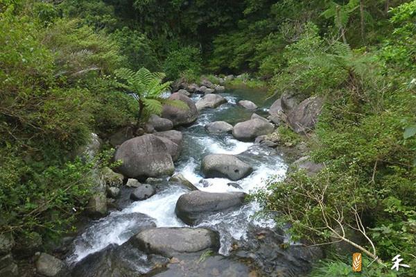 2_溪石若都被移走,河溪功能的健全會受影響。(圖片來源:人禾)
