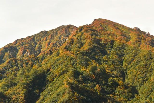 大鳥池の紅葉風景