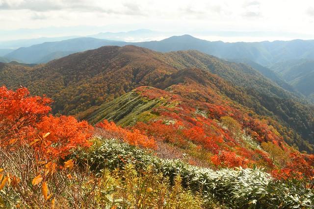 小朝日岳から鳥原山へ