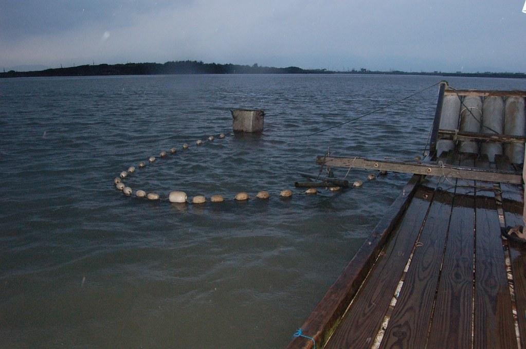 台灣的鰻苗有7成是靠船隻捕撈,韓玉山建議應將強管理。圖片來源:韓玉山。