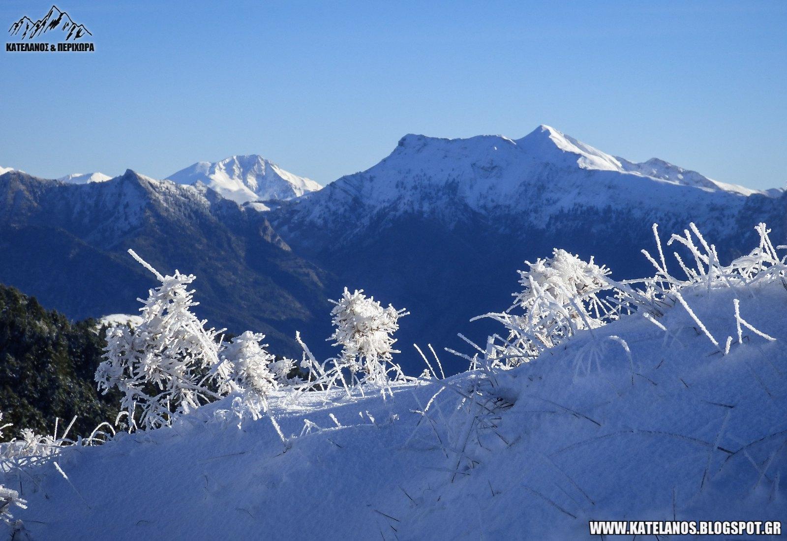 βελουχι χελιδονα πρωτα χιονια χειμωνας