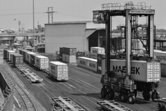 Straddle carriers, Port of Chittagong