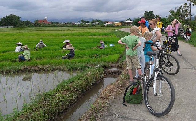 Chiang Mai Bicycle 02