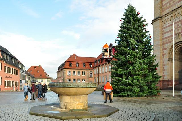 Speyer 2017: der Weihnachtsbaum zwischen Dom und Domnapf wird mit roten und goldenen Kugeln geschmückt ... Foto: Brigitte Stolle