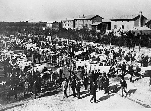 Il mercjât des bestiis di Rivignan intune foto vecje