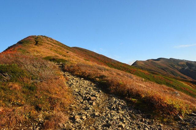 竜門小屋から眺める紅葉の竜門山