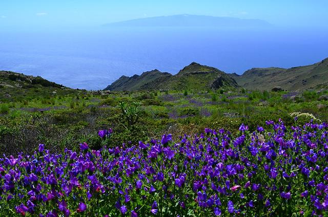 La Gomero from Teno, Tenerife