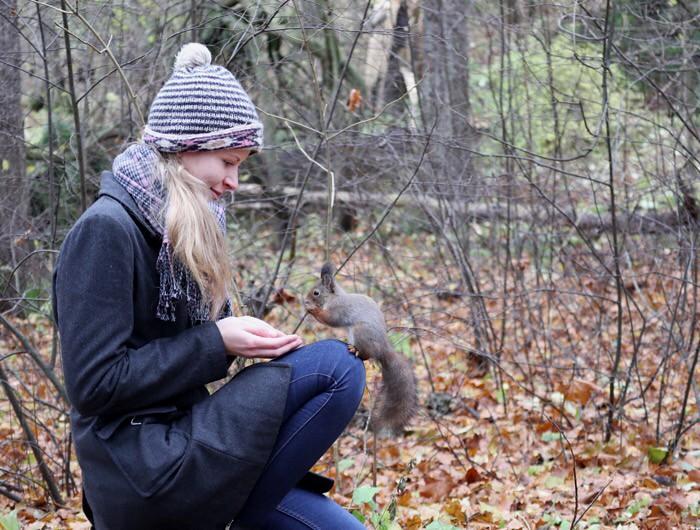 Orava polvella