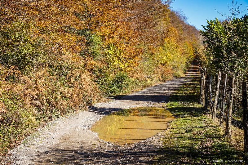 Camino que rodea la orilla norte del Lago Lareo