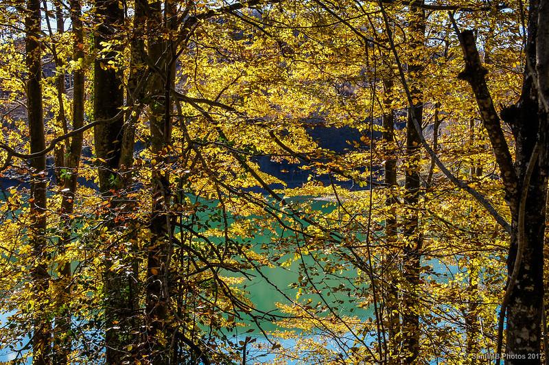 Lago Lareo desde el camino de la orilla norte