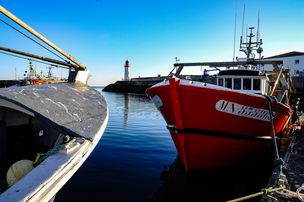Ile D Oleron Port De La Cotiniere David Marmorat Flickr