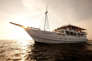 SMY Oceanic Vida a bordo Indonesia