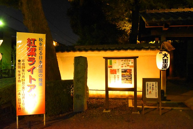 大田黒公園 2017年紅葉ライトアップ