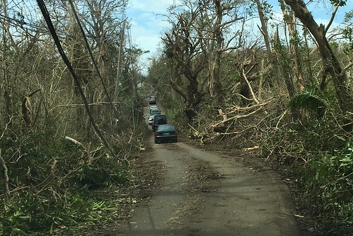 Cars navigating down a recently cleared road in Puerto Rico