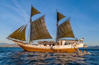Viaje de buceo a Indonesia Ondina