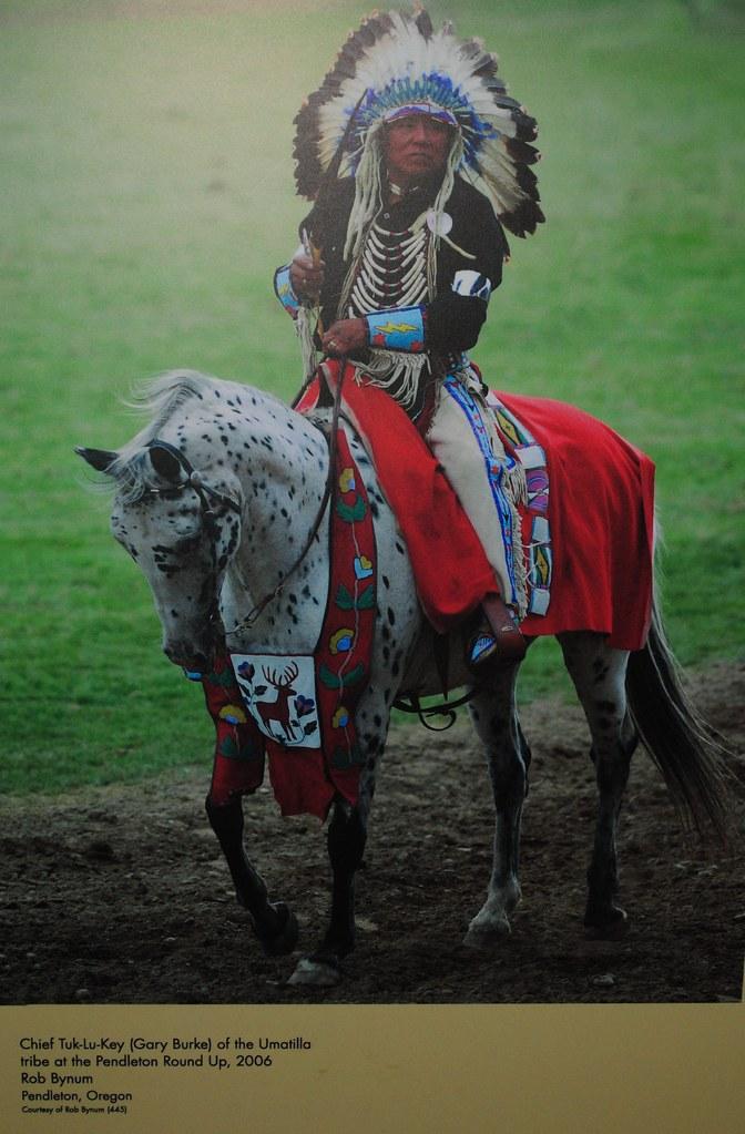 national museum   american indian chief tuk lu key  flickr