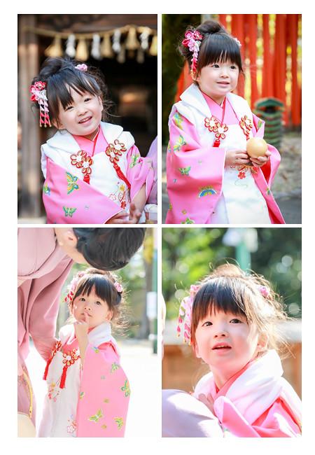 3才の女の子の七五三写真 ピンクの着物と髪飾り 愛知県瀬戸市の深川神社でロケーション撮影 女性カメラマンによる子供の自然な姿・表情