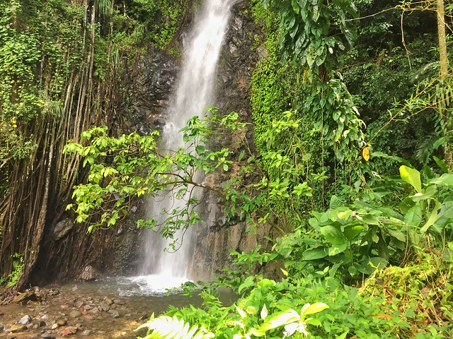 Dark Falls (Isla de San Vicente en el Caribe)