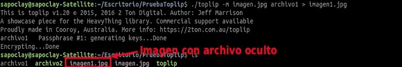 toplip-imagen-con-archivo-oculto