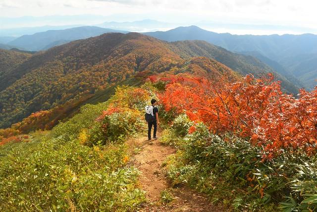 小朝日岳から鳥原山の尾根道