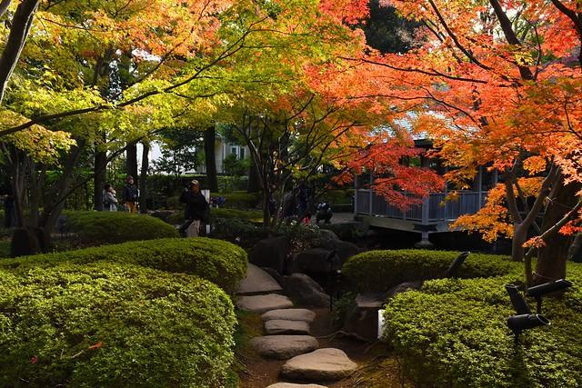 大田黒公園 紅葉の日本庭園