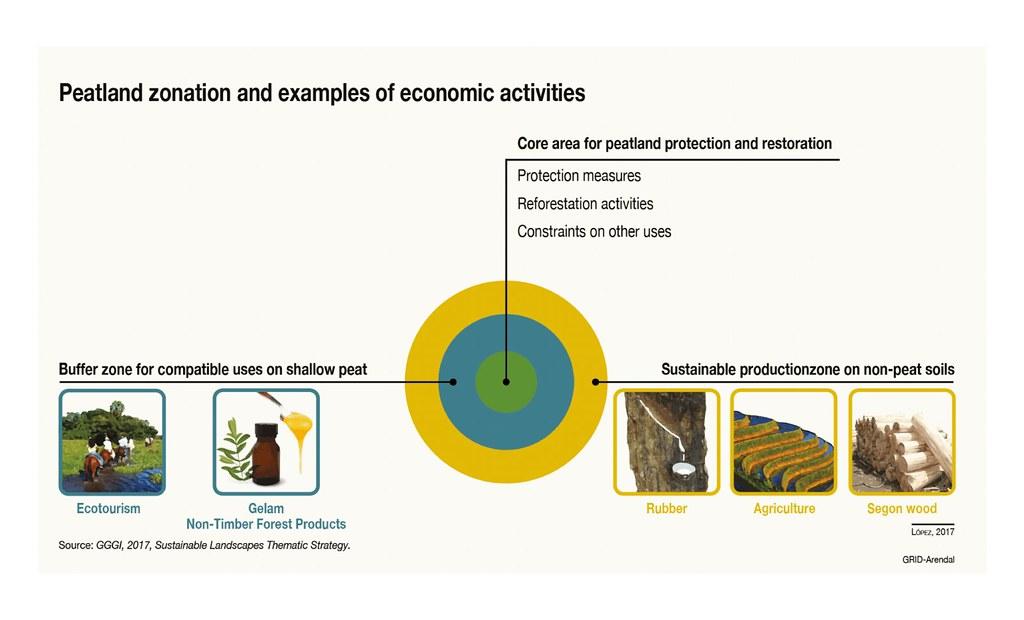 Peatland Zonation And Examples Of Economic Activities Flickr