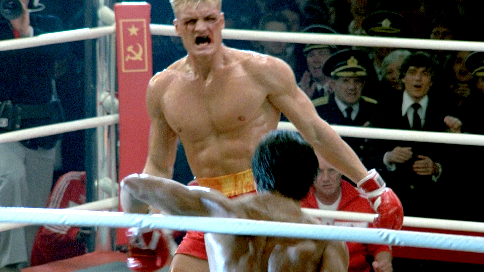 DOLPH LUNDGREN - Page 42 38280744492_09a21f7030_o
