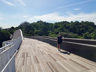 Henderson waves at the Southern Ridges | by thingsnomadsdo