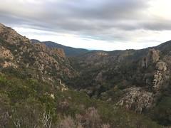 Dans la remontée vers le Castellucciu : la vallée du Finicione vers l'aval