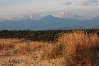 dune e sullo sfondo le Apuane innevate