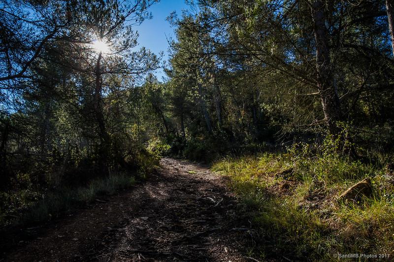 Camino de La Talaia a Marmellar