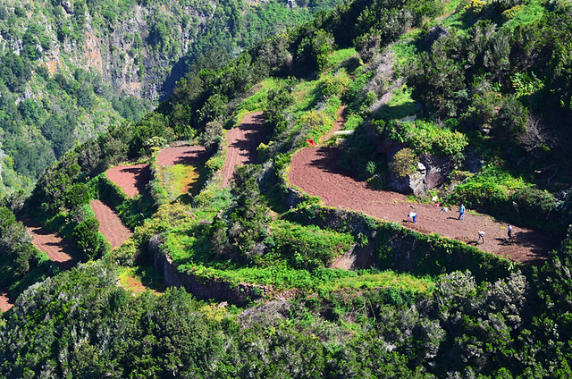 Working the land, Anaga, Tenerife
