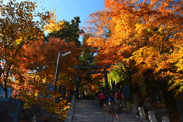御岳山(御岳神社)の紅葉