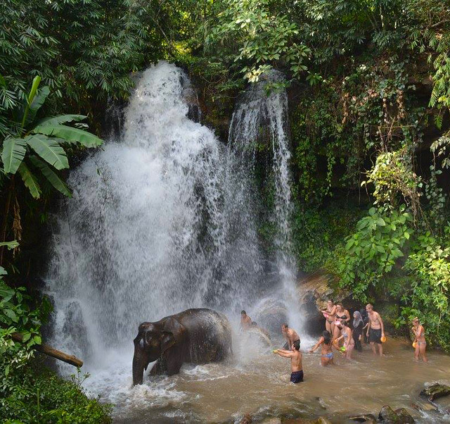 15 Facts About Chiang Mai - Elephant Sanctuary Waterfall