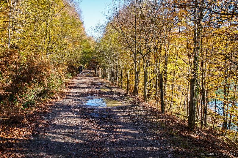 Camino de la orilla norte del Lago Lareo