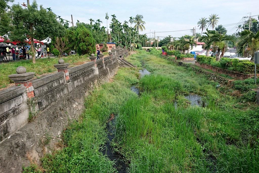 五溝水居民發現保護好環境和在地特有種水草,社區產業才有機會。攝影:李育琴。