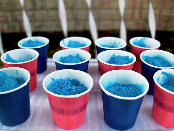 gender reveal party ideas with color powder www wholesalec flickr