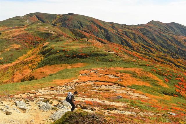 紅葉の朝日岳 縦走登山