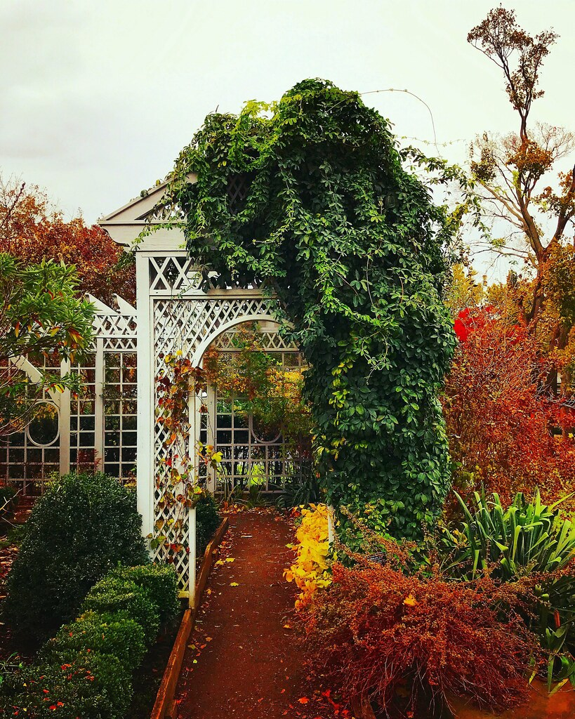 botanical garden snug harbor staten island nyc by christian montone - Staten Island Botanical Garden