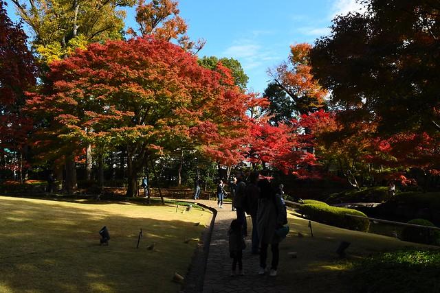 大田黒公園 園内の通路