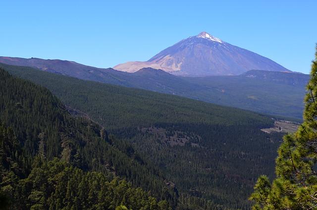 Upper Orotava Valley, Orotava, Tenerife