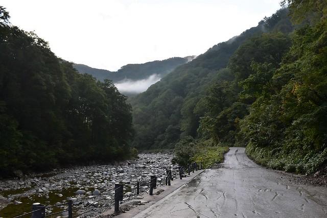 泡滝ダムまでの林道
