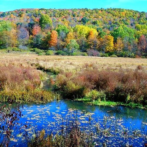 upstateny #mountain #hike #nature...