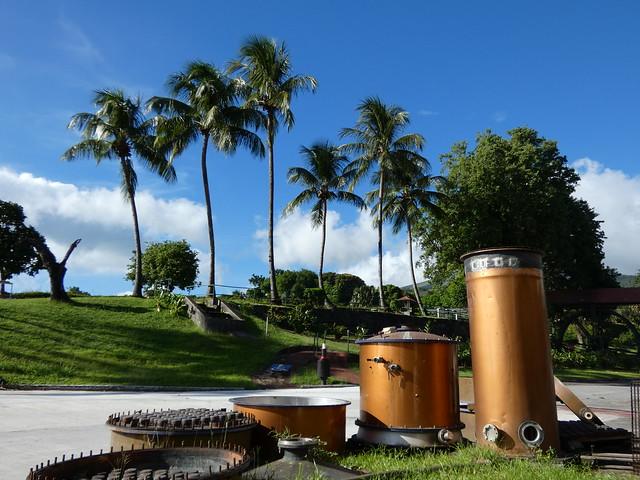 Destilería DEPAZ en Martinica (Islas del Caribe)