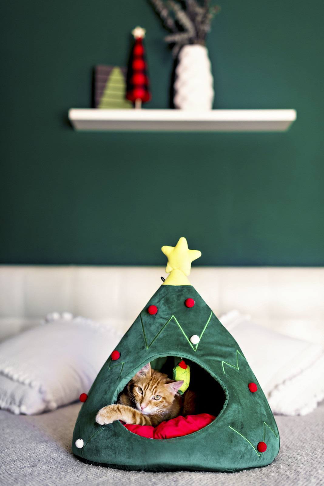 top 10 christmas gifts for cats