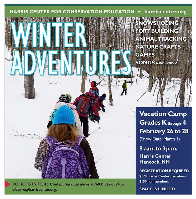 flyer for Winter Adventures camp